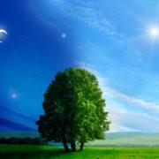 夜の生活から昼の生活に生活リズムを戻す方法とは?